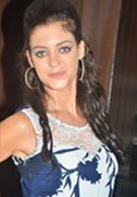 Melnattu Marumagan Movie Audio Launch Images
