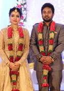 Karthik - Satna Titus Wedding Reception Images